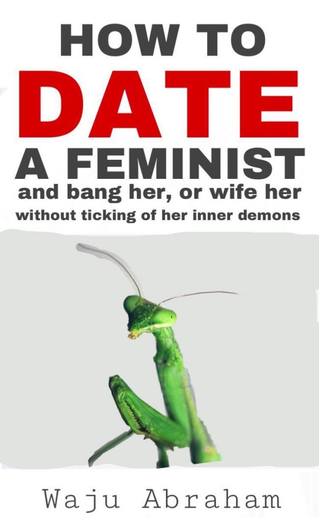 How To Date a Feminist & Bang Her, or Wife Her without Ticking of Her Inner Demons