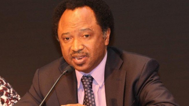 Shehu Sani Reacts To Buhari's Endorsement By Arewa Consultative Forum