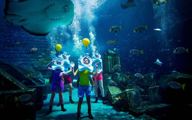 world's largest, biggest and best aquariums