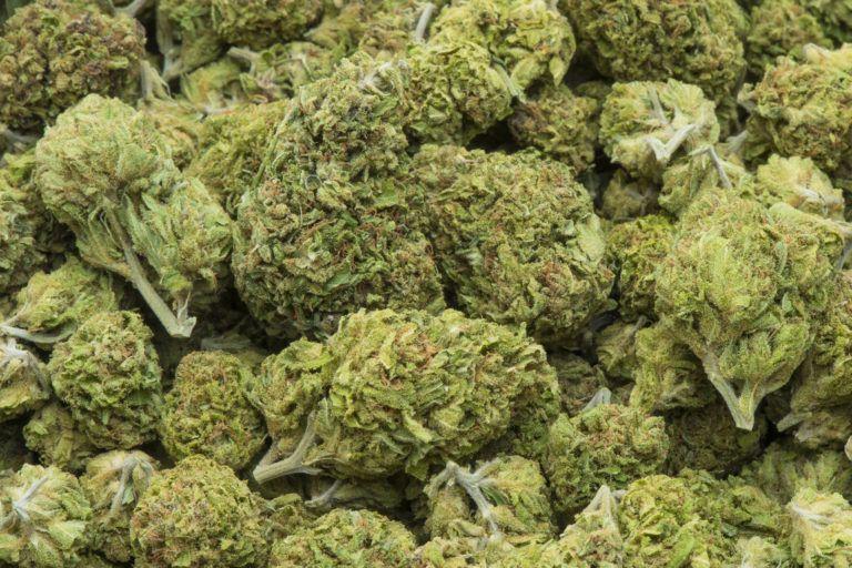 SHOCKER: Cannabis worth N25 million concealed in a dead body