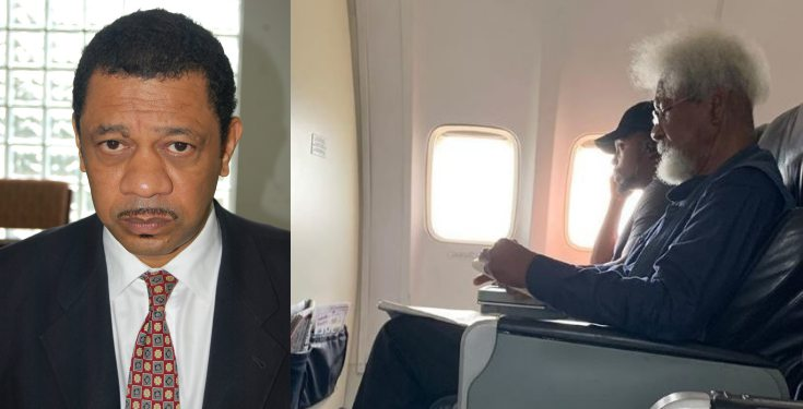 FULL TEXT: What Wole Soyinka Son Said About Father's Involvement In Plane Saga